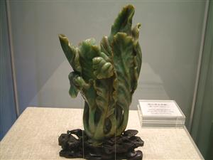 A  Jade Cabbage